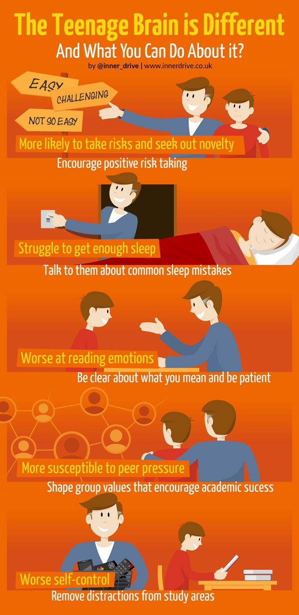 The teenage brain is different and what you can do about it infographic